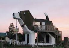 Beagle house 1