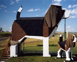 Beagle house 2